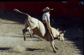 Tradicioens de Jalisco Charreria Mexicana