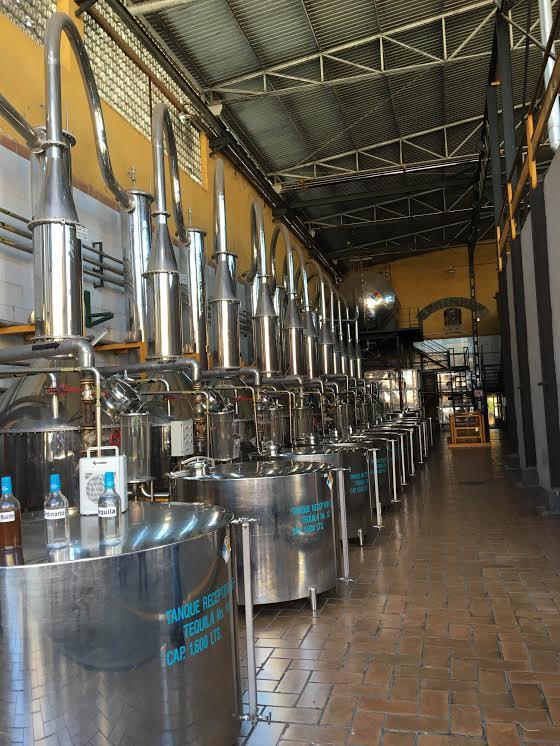 Fabrica de Tequila Herradura Proceso de destilación en Alambiques