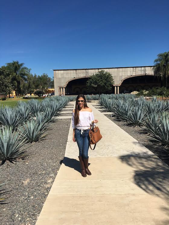Experiencia en la fábrica de Tequila, Herradura en Amatitán