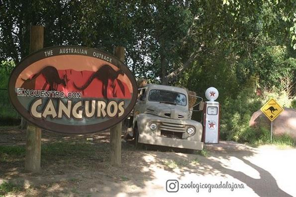 Zoológico Guadalajara Actividades para niños en Guadalajara